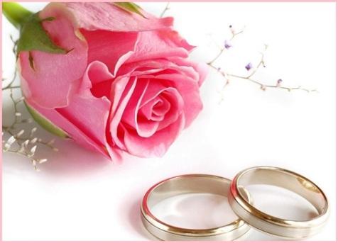 Wedding-rings-rose-flower-hd-wallpapers-wedding-zonehdwallpapers