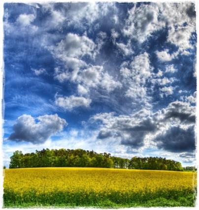 Best-top-desktop-beautiful-nature-wallpapers-hd-nature-wallpaper-picture-image-photo-10