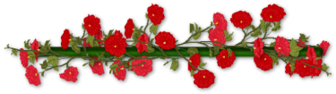 0328095052251_35_red-flower-line
