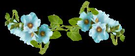 blue-ivy-line
