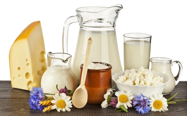 wallpaper-milk-cheese-cottage-cheese-sour-cream-dairy-products-1680x1050